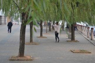 Yangtze River boardwalk