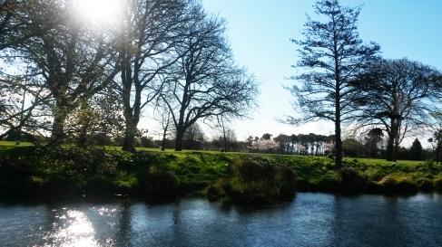 Hagley Park & The Avon River