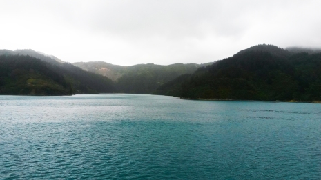 The ferry from heading into the stunning Marlborough Sounds